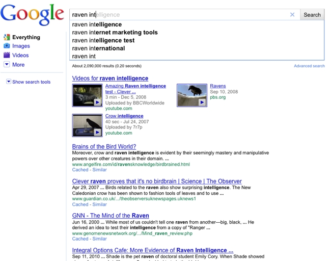 Google Instant Raven In Search