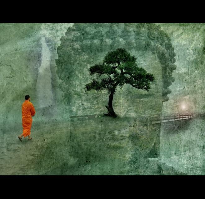 Zen Master of Marketing